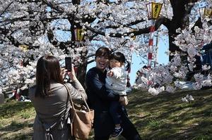 おおがわら桜まつり (5).jpg